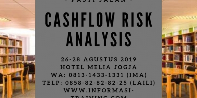 Cash flow and Risk Analysis